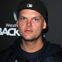 Swedish DJ Avicii found dead aged 28
