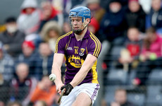 Wexford confirm talented forward is no longer part of Davy Fitzgerald's panel