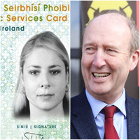 At least �2 million ploughed into PSC / driving licence project -  before Shane Ross pulled the plug because it wasn't legal