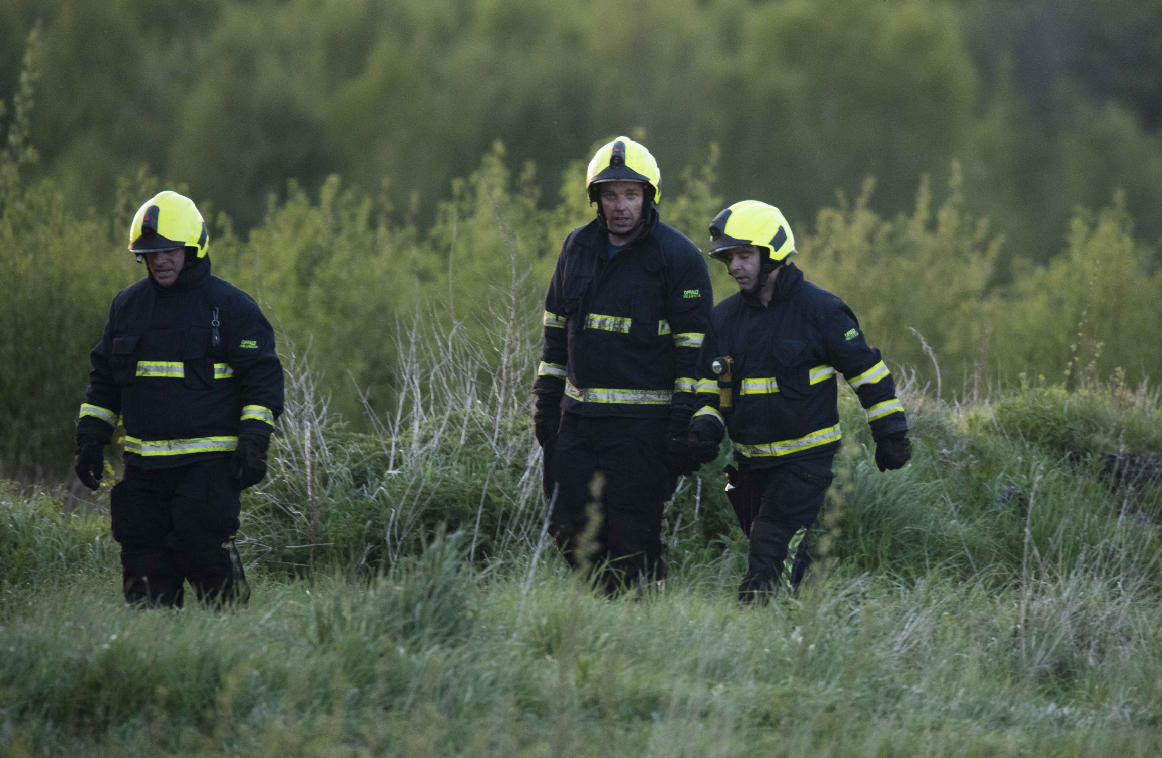 Offaly plane crash: Eyewitness says aircraft came down 'vertically' into bog