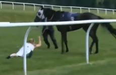 Presenter tackles horse, dusts herself down to deliver live preview of the next race