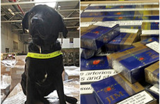 Revenue dog Elvis sniffs out €408k worth of black market cigarettes in Meath