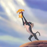 This dog being held up like Simba became a star of Dublin Castle during yesterday's celebrations