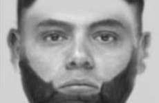 Gardaí release Evofit of suspect as they appeal for witnesses to alleged sexual assault