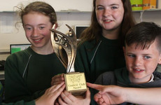 These primary school pupils from Dún Laoghaire have won an international award for their after-school coding club