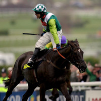 2008 Gold Cup winner Denman 'put to sleep painlessly' aged 18