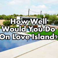 How Well Would You Do On Love Island?
