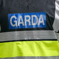 Woman (57) dies after lawnmower she was driving crashes into ditch
