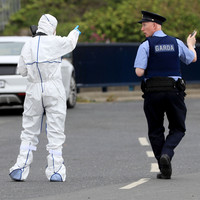 A crime hotspot in dire need of more policing or just a horrible coincidence? Inside Shankill and Bray's hectic month