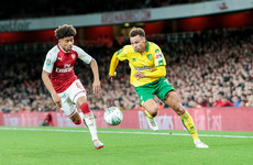 Promoted Cardiff gear up for top-flight by splashing out for Norwich winger