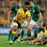 Wallabies look to Nick Phipps to fill Genia's boots after 'king hit' incident