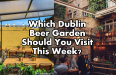 Which Dublin Beer Garden Should You Visit This Week?