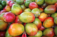What to do with... red and green mangoes from the fruit aisle