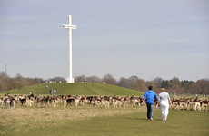 'Minimum amount of water' used in 'essential' cleaning of Pope's Cross - OPW
