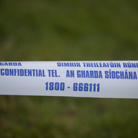Shots fired at two men while they sat in van in Lucan