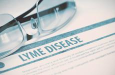 Lyme disease: 'I became a shadow, housebound, a virtual recluse'