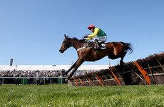 Sad news as Finian's Oscar dies following 'rare' colic complications
