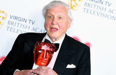 Boaty McBoatface no more: The renamed RSS Sir David Attenborough to launch maiden voyage