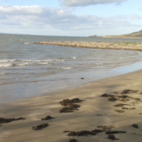 Do not swim notice issued for Claremont Beach in Howth
