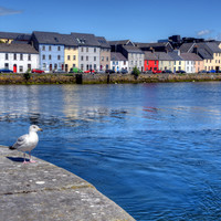 Your summer in Ireland: 5 must-see sites in Galway city