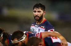 New Connacht coach Friend signs Australian flanker from the Rebels