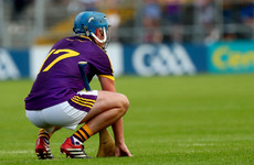'Wexford are at a crossroads - they need a new direction, something fresh'