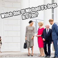 Which One Of Michael D's Dogs Are You?