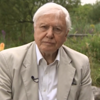 Sir David Attenborough had the most awkward AF interview with the BBC