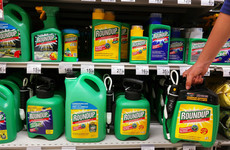 'Day of reckoning' for globally popular weedkiller Roundup as €344 million cancer trial comes to a head