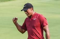 'I'm in uncharted territory': Tiger Woods savours his second-place finish