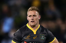 Beale backs Hodge to fill Wallabies' centre gap for All Blacks clash