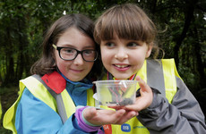 8 totally free events for kids during Heritage Week 2018 - from treasure hunts to stargazing