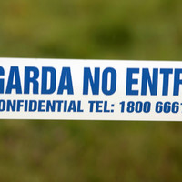 Builders find weapons during Dublin works