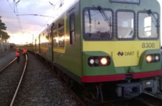 Dart derailed last year because a staff member was 'not competent'