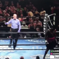 Boxer walks out of ring in first seconds of first round