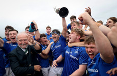 Leinster Schools clinch inter-pro title with victory over Ulster in UL