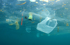 Researchers say plastic is 'indispensable' so they're trying to make it more sustainable