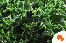GIY: My father-in-law still dismisses kale as cattlefeed - but these days it's rightly valued as a nutritional powerhouse