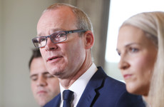 'Getting Ireland Brexit ready': Government to unveil plan as Coveney warns 'time is short'