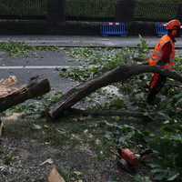 Poll: Did 'storm fatigue' affect people's preparedness for Storm Ali?