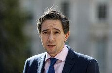 Cost of rolling out abortion services in Ireland will be 'significant', says Harris