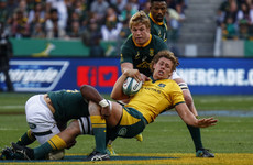 Springboks withstand fierce second-half pressure to defeat Australia in Port Elizabeth