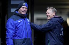 Cotter backs Joe Schmidt for All Black job if NZRU look outward
