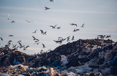 Ireland is approaching an emergency waste landfill situation, warns minister