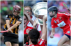 Cork and Kilkenny stars make up shortlist for 2018 Player of the Year award