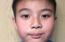 Bray school calls for halt in deportation of nine-year-old boy