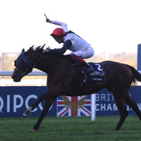 Sensational Cracksman obliterates classy field to win another Champion Stakes