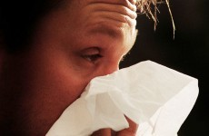 Hay fever sufferers 'take time off work and avoid sex'