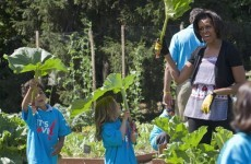 Michelle Obama's first book dishes the dirt... on her garden