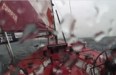 VIDEO: Team New Zealand swerve to avoid whale in Volvo Ocean Race